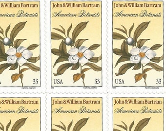 20 Franklinia Flower Stamps, Sheet of Self-Adhesive Postage Stamps, 33 Cents, Unused # 3314a
