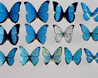 Butterfly Magnets Blue and White Set of 13 Insects Refrigerator Magnets Kitchen Decor Home Decor