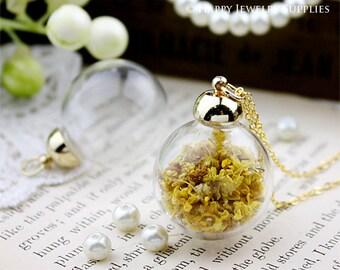 2.5 Per Set - 5 sets 25mm Clear Glass Globe Bottle Pendant (GB2513) - Big Sale