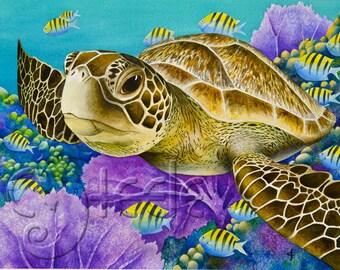 "Carolyn Steele tropical art print, close-up soulful sea turtle: ""Young Green Sea Turtle"""