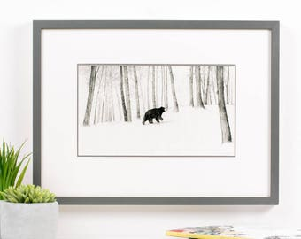 Children's Illustration Print, Children's Wall Art, Illustration Print, Bear Print, Children's Illustration, Pencil Drawing, Illustration,