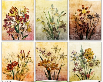 Shabby Vintage Flowers Set 3 Digital Prints Instant Download Set of 6 - 8.5 x 11 inch Printable Papers JPEG & PDF Commercial Use 1662