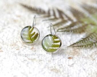 Fern earrings | Biology gifts | Fern jewelry | Biology teacher gift | Real fern dangle earrings for her | biology jewelry | Gift for her