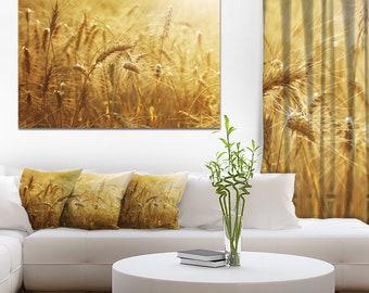 Golden Wheat Field in Landscape Canvas Art Print and Landscape Metal Wall Art  (PT14239)