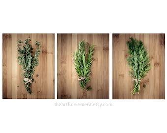 Kitchen decor, Herb prints, Cooking art, Large wall art set, Large Home décor, Set of 3 prints, Modern decor // Culinary Herbs photo set