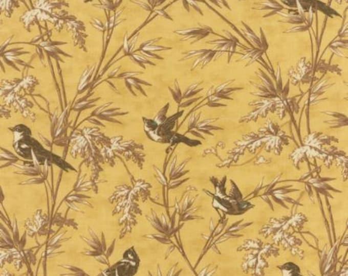 Larkspur Birdsong Yellow - 1/2yd
