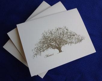 Merci Notes - set of 25 - Live Oak Tree Thank You Notes