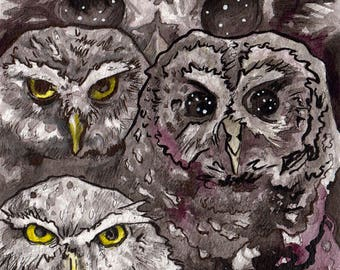 Three Owls in Ink - Print of Spooky Owls - Watercolor and Ink Owl Art Reproduction - Painting of Owls by Jen Tracy for Horror Story