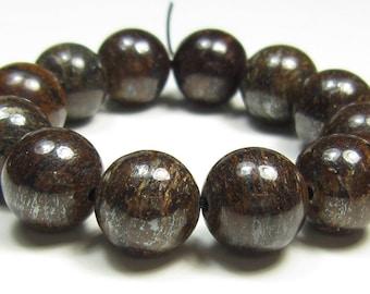 Rustic Beauty - 10mm Bronzite Round Bead - 12 beads - #GS8288
