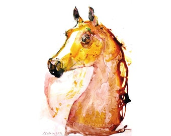 Original ARABIAN HORSE WATERCOLOR painting - Sketch