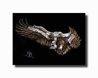 Original ACEO Scratchboard Art Card - Coming In For A Landing -  Bird Vulture Wings Raptor Animal Wildlife Miniature Art Safyre Studios