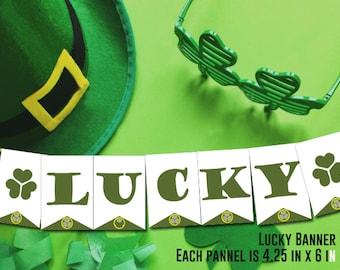 St. Patricks Day / Irish Sign / Decoration Banner / Happy St Patricks Day Banner / St. Patricks Decorations / Photo Prop / Mantel / Clover
