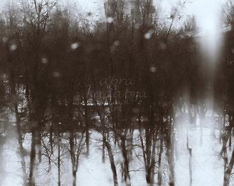 Sleet mystical landscape Instant Digital Download Art Photography Printable, gothic monochrome photography, black white, dark landscape