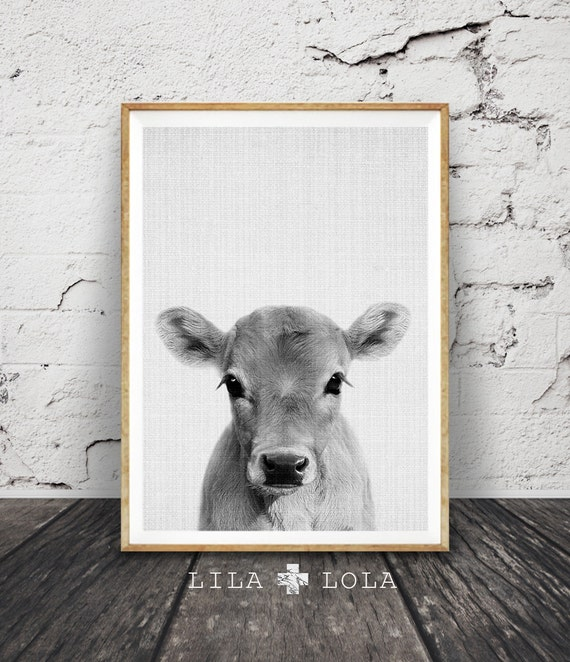 Calf Print Baby Cow Farm Animal Wall Art Nursery Decor
