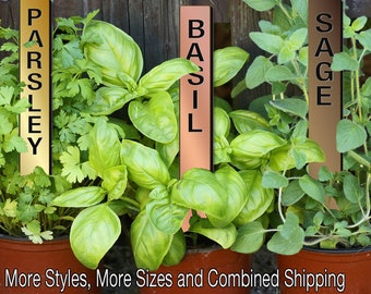 Straight-Up 12in Metalgraph Acrylic Herb Garden Stakes Plant Markers