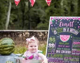 SALE Watermelon Birthday Chalkboard, One in a melon Chalkboard, Watermelon Party Sign, Summer Birthday day, Girls First birthday Chalkboard