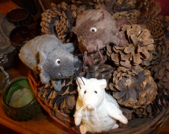 Recycled Rodents are Back Benefit for The Columbia Gorge Cat Rescue