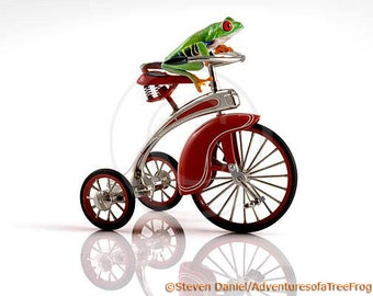 Tricycle Frog, Child's Room Art, Nursery Decor, Fun Frog Photo