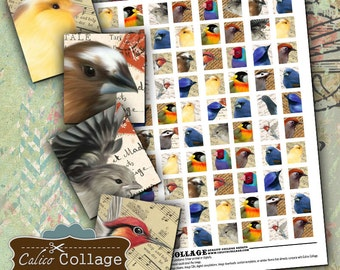 Painted Birds Scrabble Tile Digital Collage Sheet Decoupage Paper Vintage Printable Pendant Images Calico Collage Graphics Printable Images
