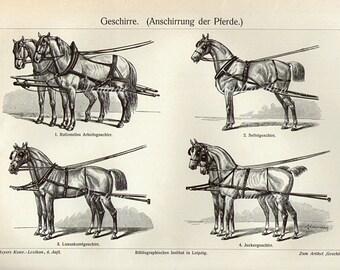 Antique Print, HORSES 1890 wall art vintage b/w engraving horse illustration print
