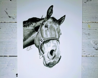 Horse wall art | Wall hanging | Animal print | Archival print | Original pencil drawing | Time lapse | Print only | Framed print available