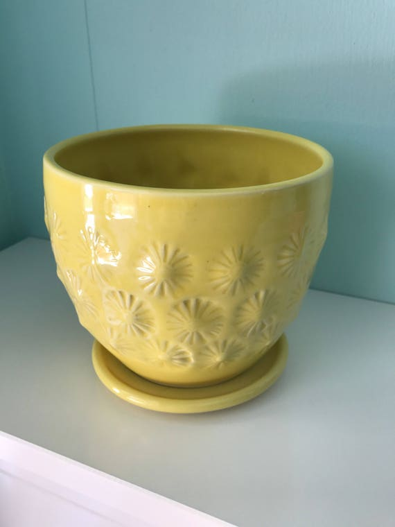 yellow planter // cactus planter // succulent pot // ceramic pot // flower pot