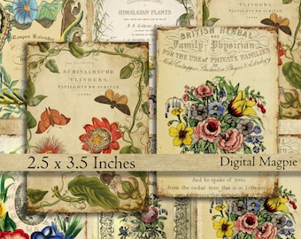 Vintage printable tags digital download 2.5 x 3.5 aged gift tags instant download Victorian herbal plants flowers botany