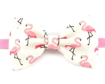 Bowtie flamingos adult or child