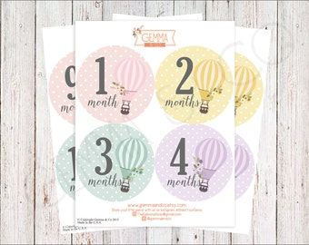 The Sophia | Hot Air Balloon Baby Girl 12 Month Stickers Set