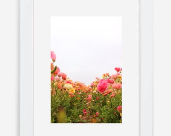 Wall Art / Home Decor / Floral print / Bohemian Decor / Framed Wall Art / Farmhouse Decor / Flower Fields / Floral Decor / Phoebe Print