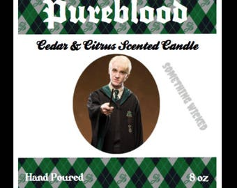 Harry Potter | Draco Malfoy | Slytherin | Inspired Candle