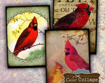 Cardinal Digital Collage Sheet Red Birds Digital Images 2.5x3.5 Printable Images for Gift Tags, Decoupage Paper, Earrings Cards
