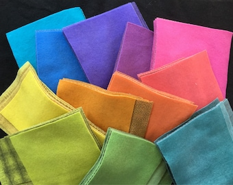 Hand Dyed Felted Wool, RAINBOW Applique Bundle,  48 pieces in Lively Colors, Perfect for Rugs, Quilts, and Crafts