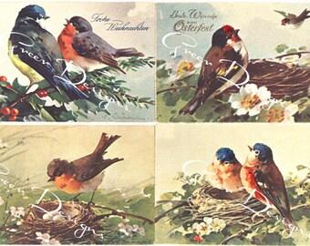 Catherine Klein Vintage Watercolor Postcards Birds Nests Robins Ephemera Victorian Digital Download