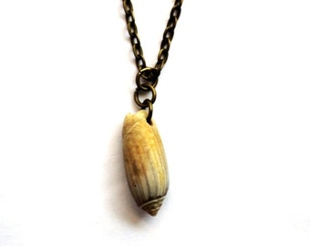 Natural Shell Necklace, Olive Seashell Pendant, Surfer, Nautical Beach Eco-Friendly Jewelry by Hendywood