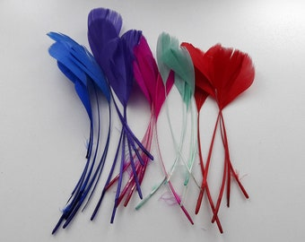 25 mixed Rooster feathers ~ 15cm