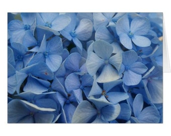 Carolina Blue Note Card