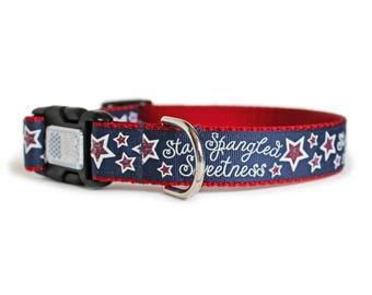 Fourth of July Dog Collar, USA Dog Collar, Patriotic, Glitter Stars, Big Dog Collar, 1 Inch Width, Gift Box- Star Spangled Sweetness