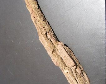 Decorative Driftwood Bark - Driftwood Sculpture - Driftwood Art - Very Cool Looking Piece!