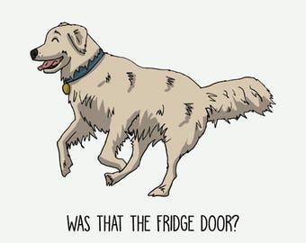 Golden Retriever Postcard: Was that the fridge door?