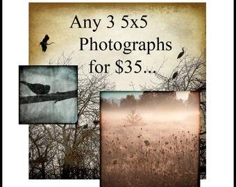 SALE--Any 3 5x5 Fine Art Photographs for 35 USD