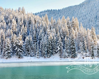 Turqoise Mountain Lake and Frosted Pines - Digital Download - Cheerful and Bright Fine Art Photography