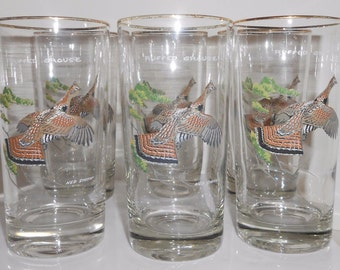 "Ned Smith ""Ruffled Grouse"" High Ball Vintage Bar Glasses Mid Century Fowl Set 6"