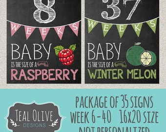 Weekly Pregnancy Chalkboard Sign - Week 6-40 Package Deal 35 Signs - Baby Size Only with fruit - 16X20 - INSTANT DOWNLOAD