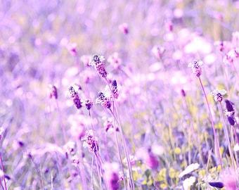 Purple Garden Art Photography, Flower Prints, Bokeh, Spring, Wall Art, Bedroom Decor, Wall Decor, Botanical Photograph, Purple Wall Art