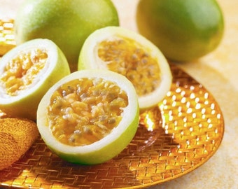 Yellow Maracuja Giant Passion Fruit Passiflora Edulis Passionflower Seeds 25 PCS ***Free Shipping!***
