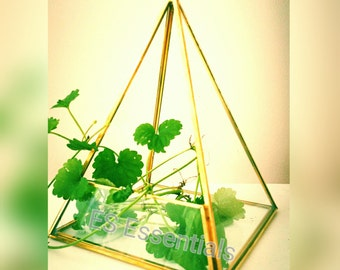 ES Glass Terrarium/mini Greenhouse/ Tabletop Succulent Planter/Candle holder