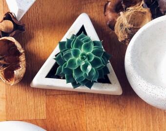 Triangle planter - Ashen