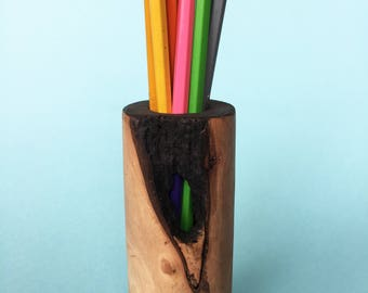 Pruning Pencil Holder