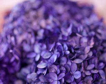 Preserved Hydrangea Bunch, purple hydrangeas, preserved hydrangea, purple wedding, purple dried flowers